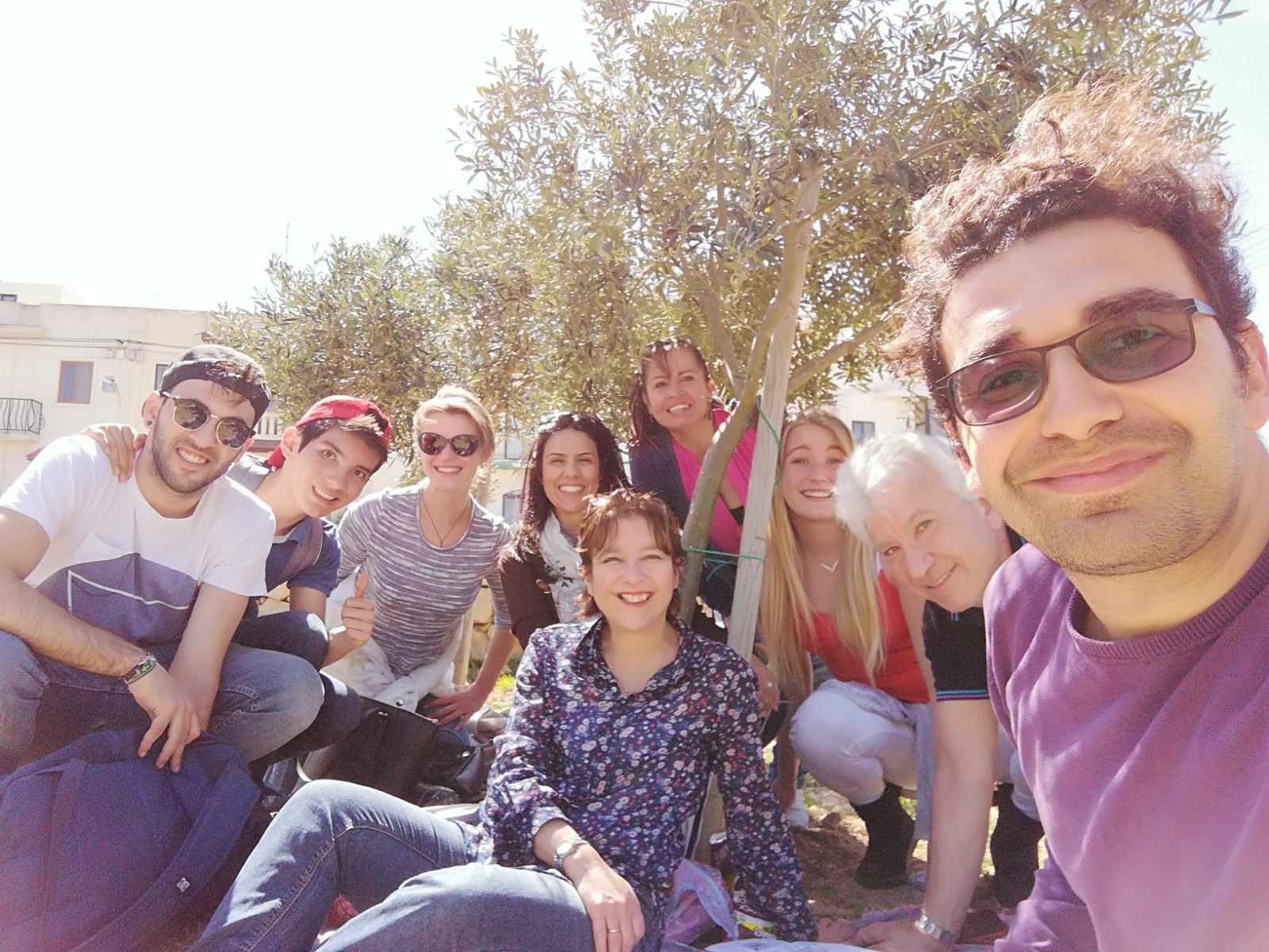 Intensive English lessons Malta. Gateway School of English GSE Photos - Outdoor English classes at the Olive Grove in San Gwann